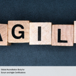 Agile Feasibility – Feasibility Phase Requirements and Investigation