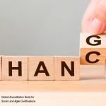 Handling Change Requests at Portfolio and Program Level