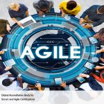 How Well Does Agile Function for Large Organizations