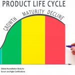 Business Justification and the Project Lifecycle