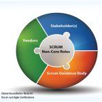 Scrum Non-core Roles – An Insight