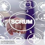 Scrum in Programs and Portfolios