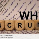 Why Use Scrum?